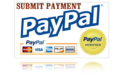 Make Payment With Paypal
